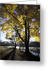 Spirit By The Lake Greeting Card by Rob Travis