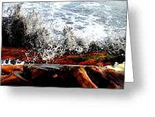 Splash on the wood Greeting Card by Nelly Avraham