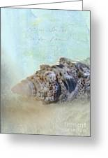 Spotted Auger Seashell Greeting Card by Betty LaRue