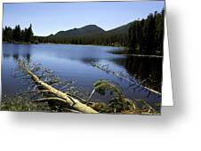 Sprague Lake Rocky Mountain National Park Greeting Card by Gary Batha