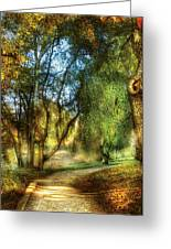 Spring - Landscape - My Journey My Path Greeting Card by Mike Savad
