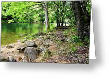 Spring Along Cranberry River Greeting Card by Thomas R Fletcher