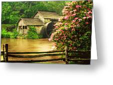 Spring At The Mill Greeting Card by Darren Fisher