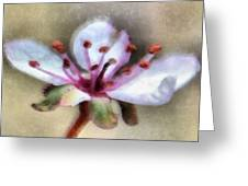 Spring Blossoms 1 Greeting Card by Angelina Vick