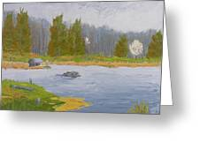 Spring Blossoms Beaver Pond Greeting Card by Robert P Hedden