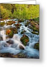 Spring Cascade Greeting Card by Leland D Howard