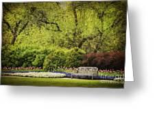 Spring Garden Greeting Card by Cheryl Davis