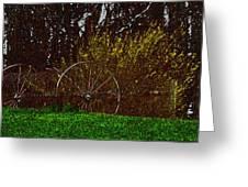 Spring In The Country Greeting Card by Debra     Vatalaro