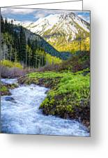 Spring Snow Melt Wasatch Mountains Utah Greeting Card by Utah Images