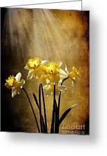 Spring Sun Greeting Card by Lois Bryan