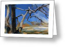 Spring Thaw 1 Greeting Card by Bob Salo