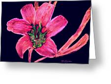 Spring Time Greeting Card by Melvin Moon