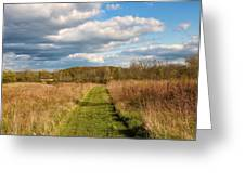 Spring's Mowed Path Greeting Card by Rachel Cohen