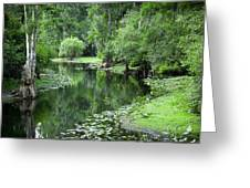 Springtime On The Lake Greeting Card by Carolyn Marshall