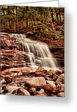 Stairs Falls Greeting Card by Heather Applegate