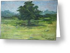 Standing Tree Greeting Card by Ken Krug