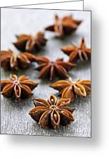 Star Anise Fruit And Seeds Greeting Card by Elena Elisseeva