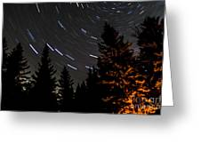 Star Trails Above Spruce Tree Line Greeting Card by Darcy Michaelchuk