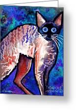 Startled Cornish Rex Cat Greeting Card by Svetlana Novikova