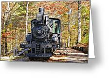 Steam Locomotive on Display Greeting Card by Susan Leggett