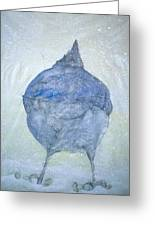 Stellar Jay From  Back Greeting Card by Debbi Chan