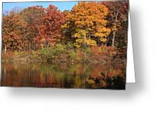 Sterling Pond Greeting Card by Lyle Hatch