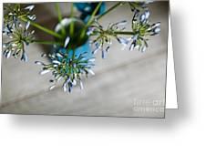 Still Life 04 Greeting Card by Nailia Schwarz