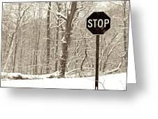 Stop Snowing Greeting Card by John Stephens