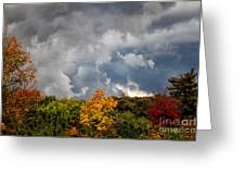 Storms Coming Greeting Card by Ronald Lutz