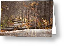 Stormy Autumn Greeting Card by Karol  Livote