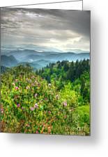 Stormy Spring Skies Greeting Card by Bob and Nancy Kendrick