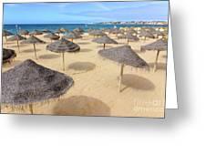 Straw Sunshades Greeting Card by Carlos Caetano