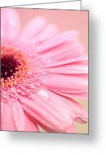 Strawberry Vanilla Swirl Greeting Card by Nastasia Cook