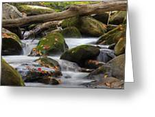 Stream Of Thought Greeting Card by Charles Warren