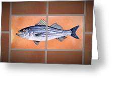 Striped Bass Greeting Card by Andrew Drozdowicz