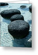 Stromatolites Greeting Card by Georgette Douwma