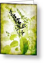 Study In Green Greeting Card by Judi Bagwell