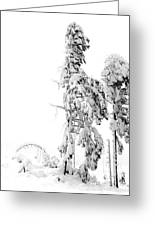 Sudden Blizzard 3   Greeting Card by Christine Burdine