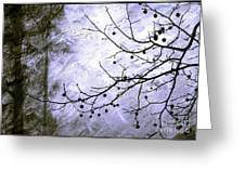 Sudden Snowstorm Greeting Card by Judi Bagwell