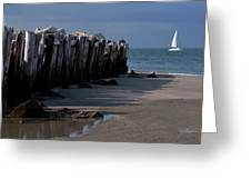 Sullivans Island 42611-1 Greeting Card by Melissa Wyatt
