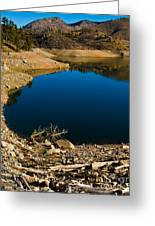 Summer At Seaman's Reservoir Greeting Card by Harry Strharsky