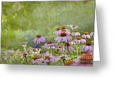 Summer Rains Greeting Card by Reflective Moment Photography And Digital Art Images