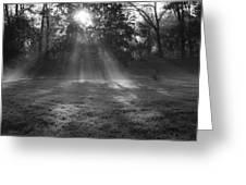 Sun Rays Though Fog Greeting Card by Sven Brogren