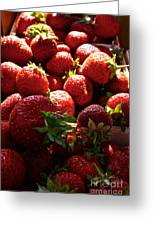 Sun Ripened Greeting Card by Susan Herber