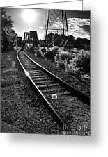 Sundown Gleaming Off The Rails Greeting Card by Shutter Happens Photography