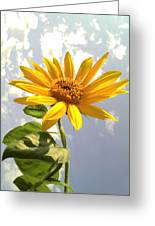 Sunflower Greeting Card by Marilyn Sargent