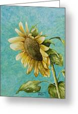 Sunflower Number One Greeting Card by Mary Ann King