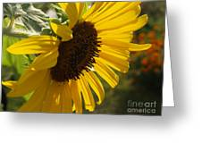 Sunflower Profile Greeting Card by Anna Lisa Yoder
