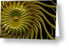 Sunflower Greeting Card by Richard Rizzo