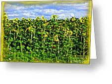 Sunflowers In France Greeting Card by Joan  Minchak